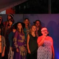 2017-07-29_Memmingen_Landesgartenschaugelaende_LGS-Joy-of-Voice_Sommernachtszauber_2017_Poeppel-1035