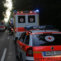 2017-08-30_Neu-Ulm_Finningen_Steinheim_Pkw_Baum_Feuerwehr_Poeppel-0008