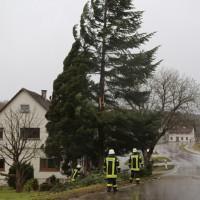 2018-01-04_Ravensburg_Bodenegg_Baum-droht-Haus_Feuerwehr_Unwetter_Poeppel_0006