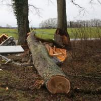 2018-01-04_Ravensburg_Immenried_Baum-stuerzt-auf-Bushaeuschen_Feuerwehr_Unwetter_Poeppel_0003