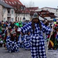 2018-01-20_Aichstetten_Narrensprung_Poeppel_0481