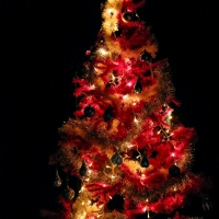 201912222019-12-22_Augsburg_Chris-Murray_Joy-of-Voice_Christmasshow_Poeppel_0170