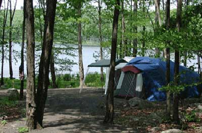 camping the best public