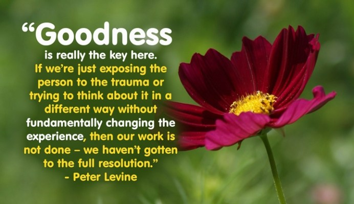 PTSD Challenges - Perceiving and Experiencing Goodness