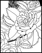 Self-Holding Step 2 Coloring Page rose detail