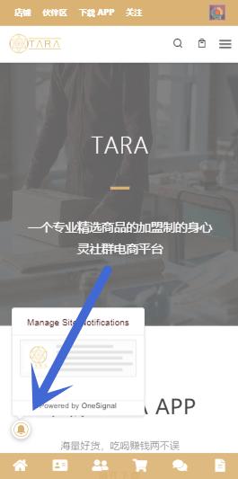 了解 TARA 联盟 4
