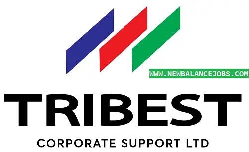 Tribest jobs
