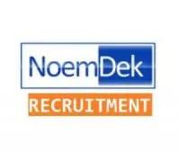 NoemDek Limited Recruitment 2021, Careers & Job Vacancies (3 Positions)