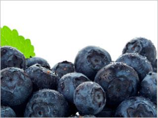 blueberry-