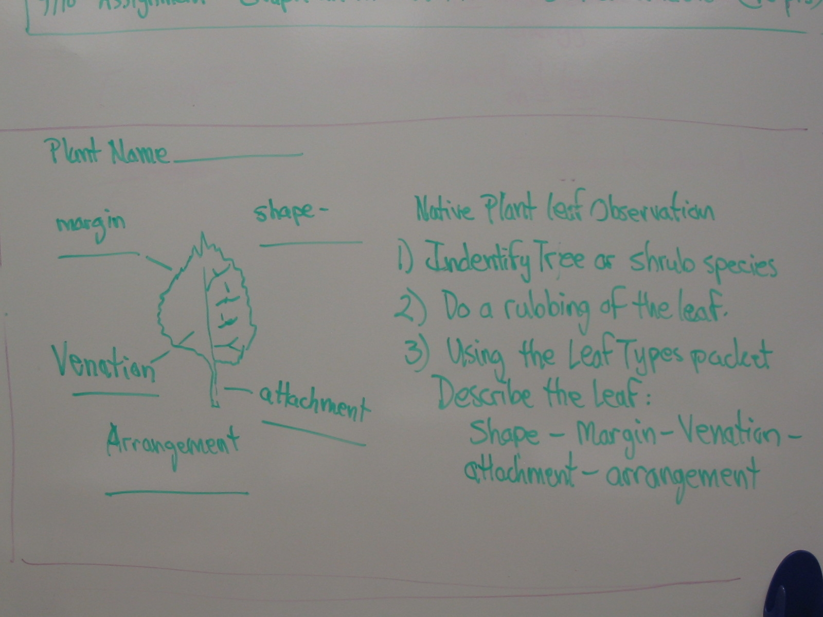 Introduction To Horticulture Class