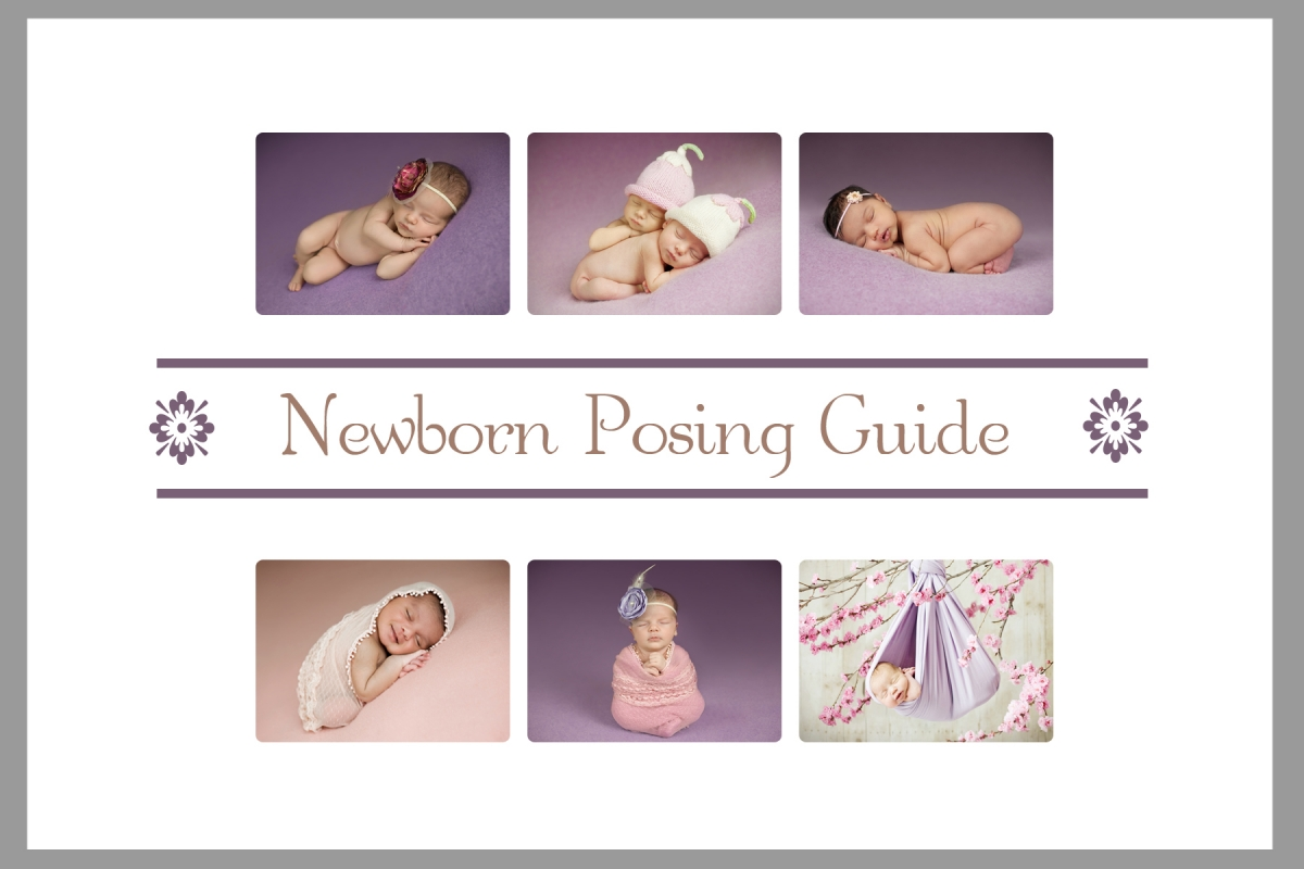 studio lighting diagram 240 volt plug wiring newborn posing guide