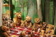 Teddy Bear Picnic Hot Girl Hd Wallpaper