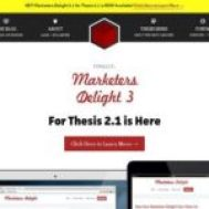Thesis-theme-and-Marketer's-Delight