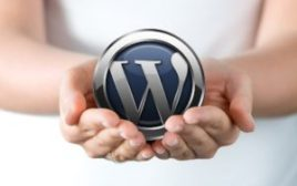 8 Reasons Why WordPress is The Best CMS For Your Business Website