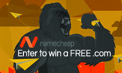 Free .Com domain from NameCheap
