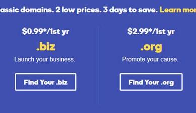 godaddy biz org info co domain on sale