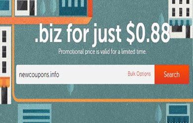 namecheap register .biz domain just 88cents
