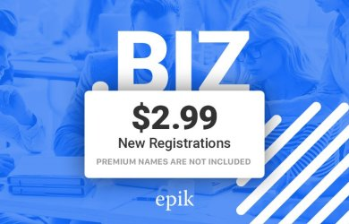 epik $2.99 .biz registration