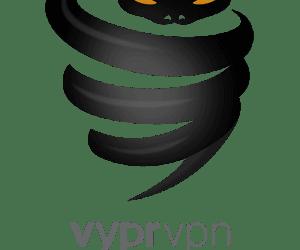 vyprvpn golden frog logo