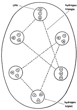 Sulfur Diagram Found