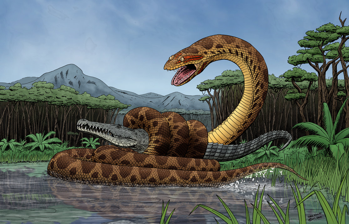 Titanoboa Facts And Pictures