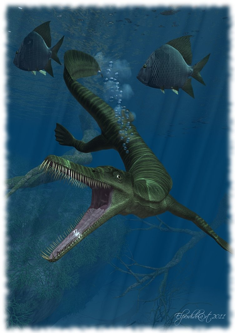 Mesosaurus  Facts and Pictures