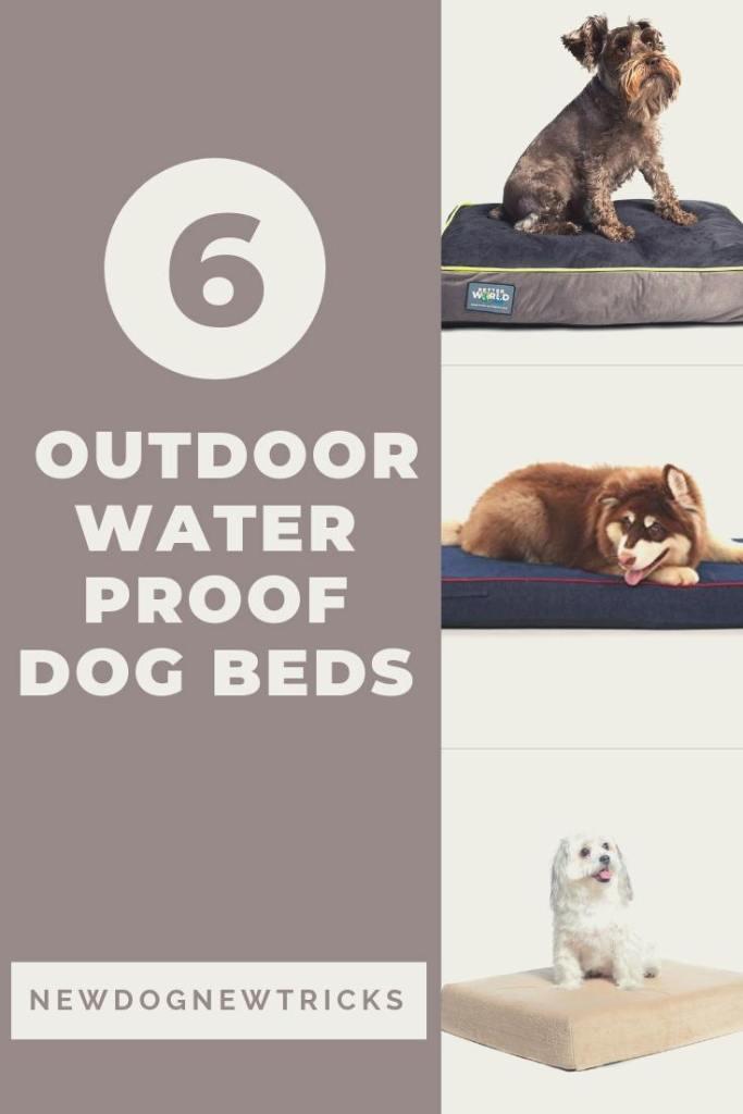 6 Best Outdoor Waterproof Dog Beds