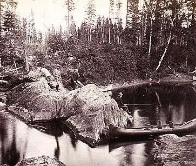 Fishing In The Maine North Woods 1885