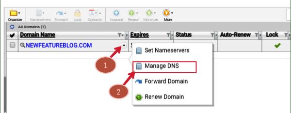 click-on-domain-drop-down-menu-and-select-manage-DNS