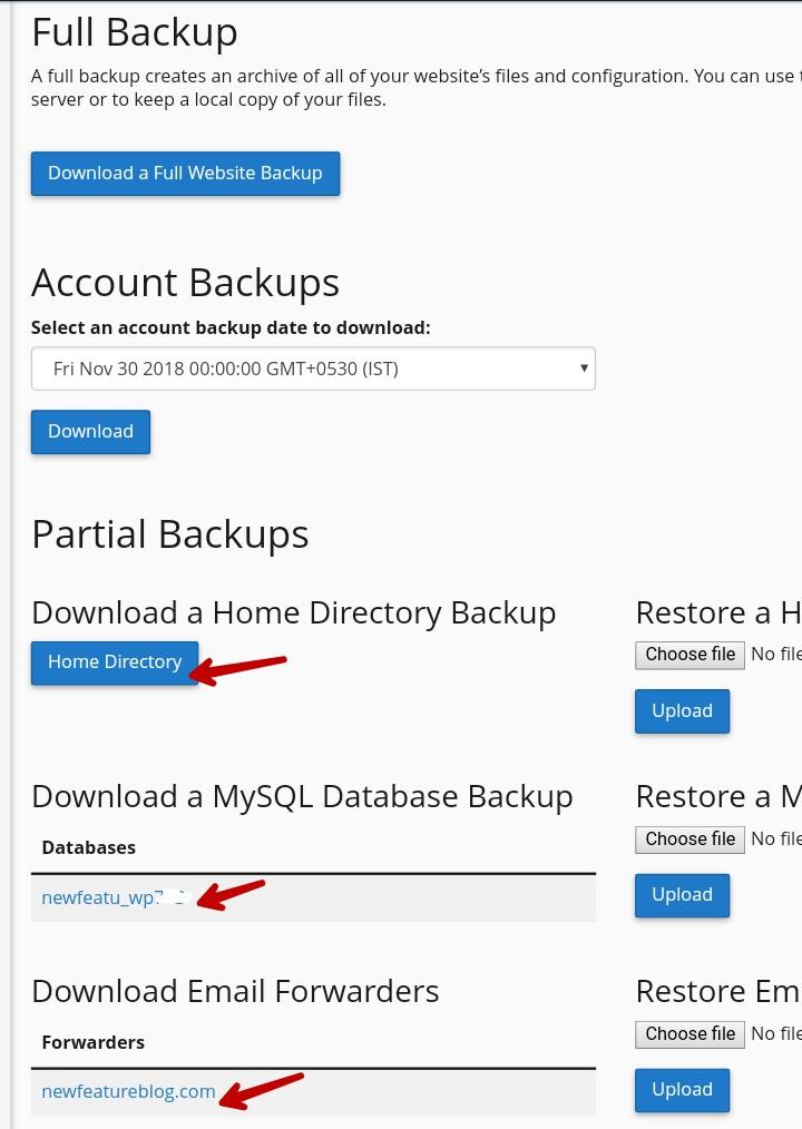 partial backups of wordpress site
