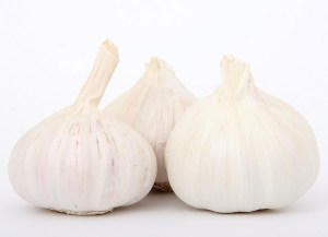 garlic lahsun
