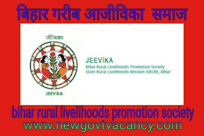 Bihar Rural Livelihoods Promotion Society 2019