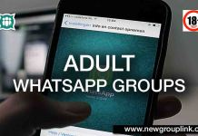 18+ American Adult WhatsApp Group Main
