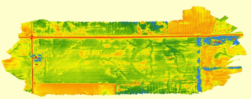 NDVI view of field tile lines after excessive rain
