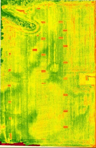 NDVI view of planter skips