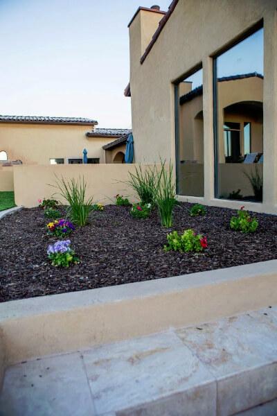 arizona fertilizer & desert landscape