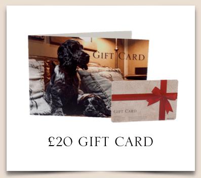 £20 NIB Gift Card