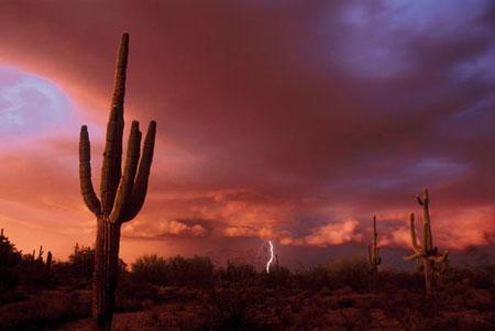 Approaching storm, Arizona