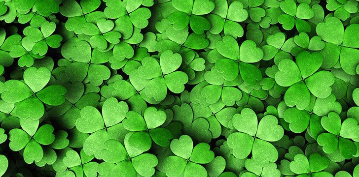 16 Lucky Facts About Saint Patrick's Day