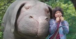 Ziemlich beste Freunde: Mija und ihr Schwein Okja (Foto: Netflix)