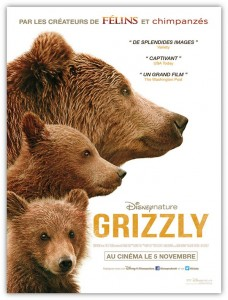 Affiche Disney Nature Grizzly