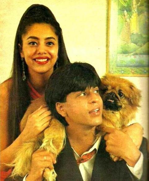 Image result for shahrukh and animals