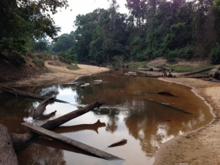 Site of the proposed Areng River dam, which local indigenous villagers and NGO Mother Nature have been resisting. Photo: Sarah Milne