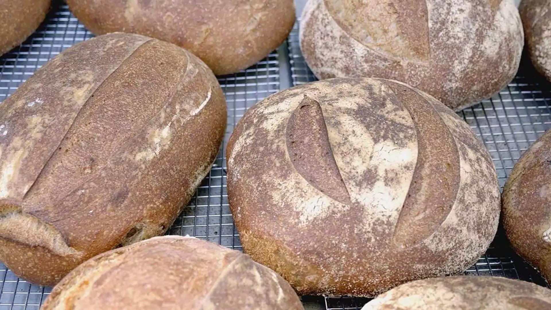 A group of freshly baked bread.