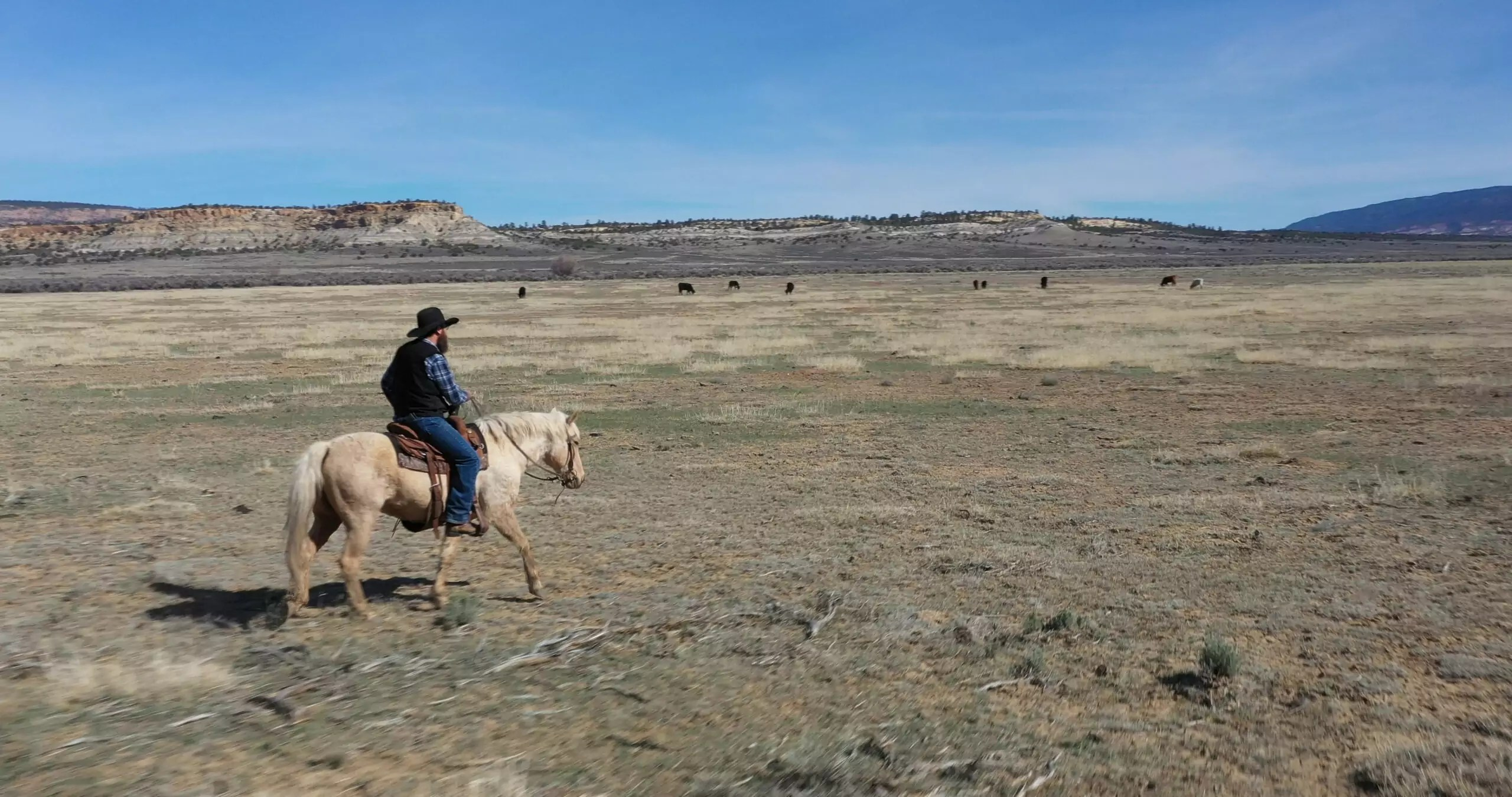 A man sits on a horse in the middle of an open desert field.
