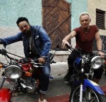 Sting + Shaggy