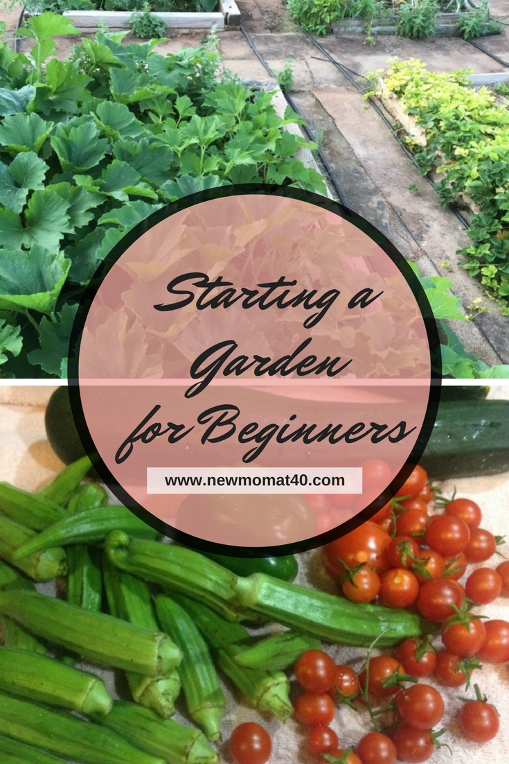 Gardening For Beginners Gardening With Kids. Earth Day .So You Want To Start  A