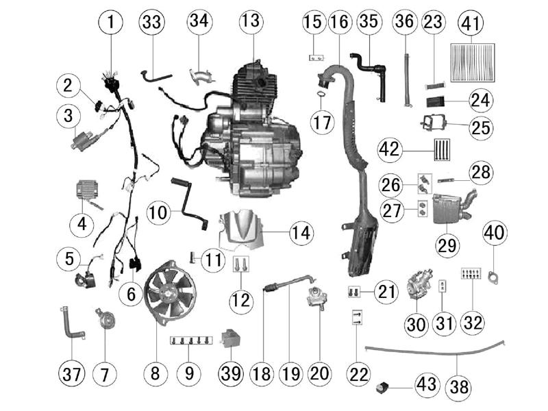 Schema Electrique Quad 110 Chinois
