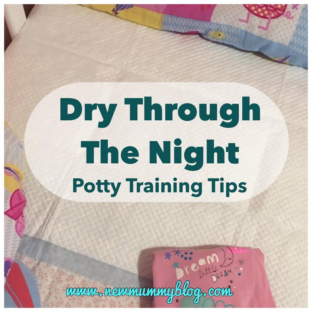Potty Training Dry At Night - Potty Training Tips