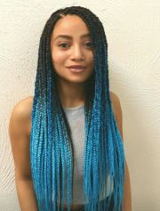 box braids with color in
